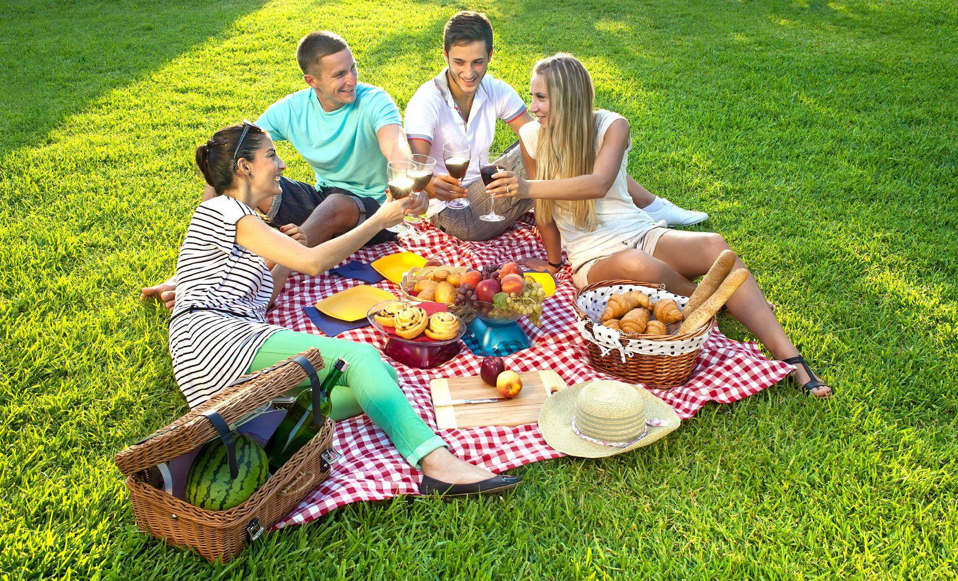 же, первый пикник картинки отдых на природе компания холодильник стоят дёшево
